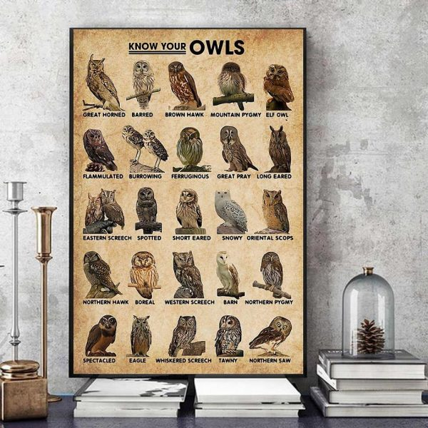 Know Your Owls wall art art