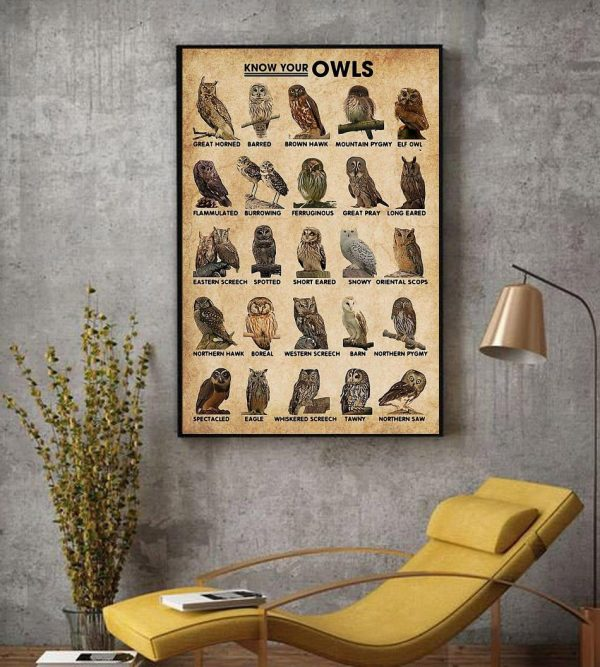 Know Your Owls wall art decor