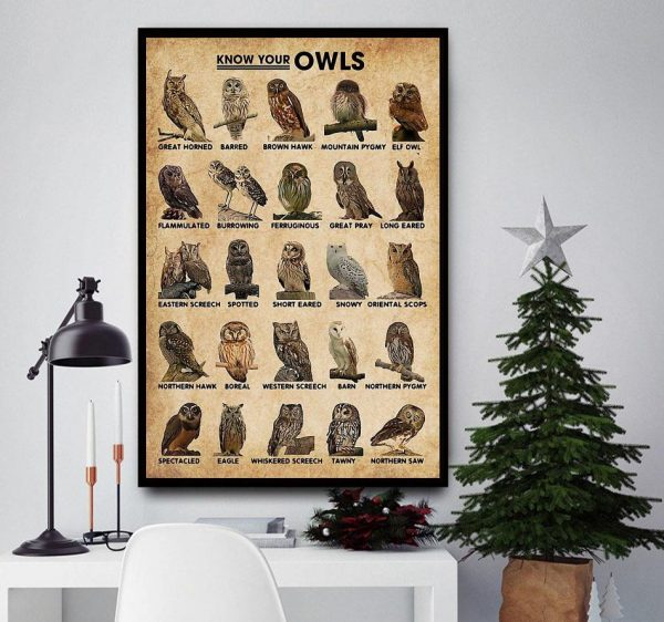 Know Your Owls wall art