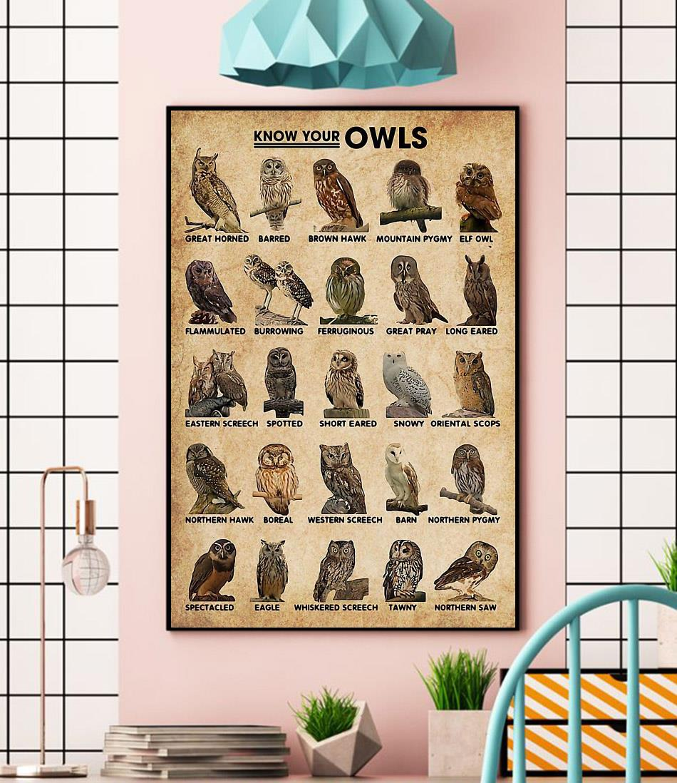 Know Your Owls wall art wall