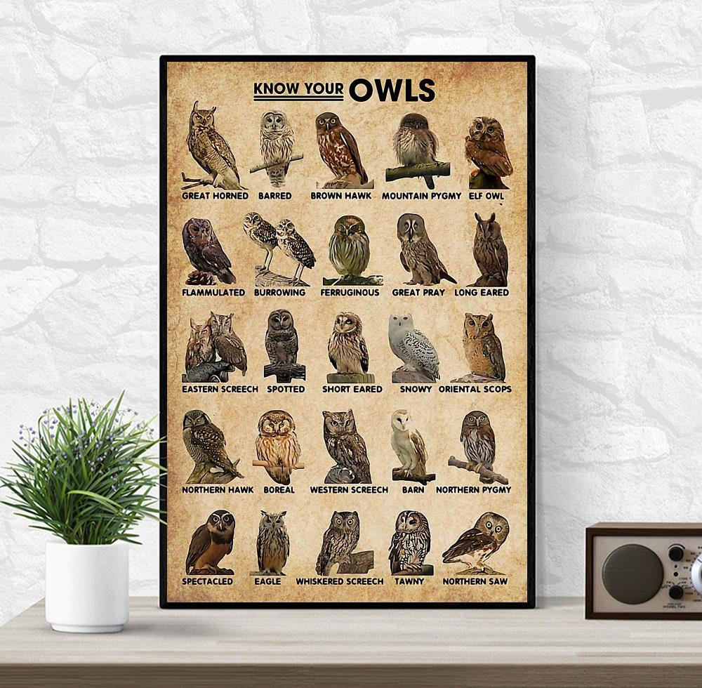 Know Your Owls wall art wrapped