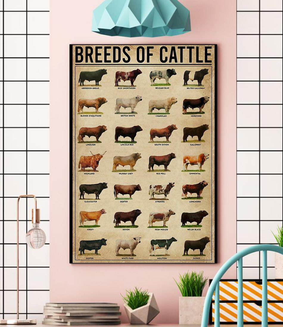 Cow Breeds of Cattle wrapped canvas
